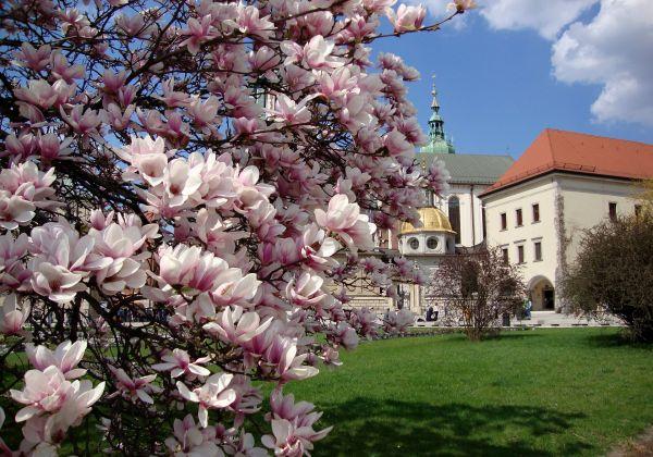 Oswienčim a Krakow - 1 dňový zájazd jeseň