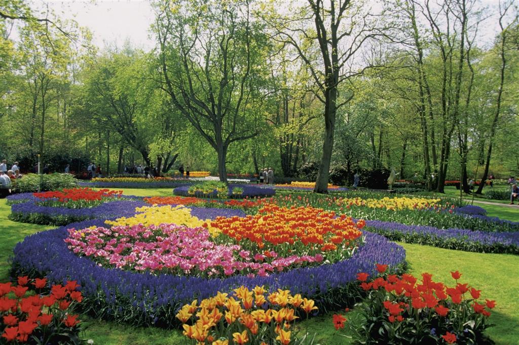 Květinové korzo - Holandská květinová pohádka - květinové korzo