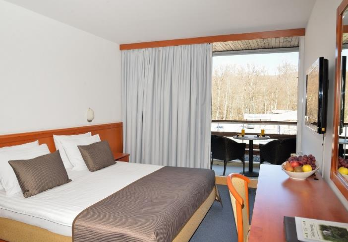 Hotel Jezero - 30
