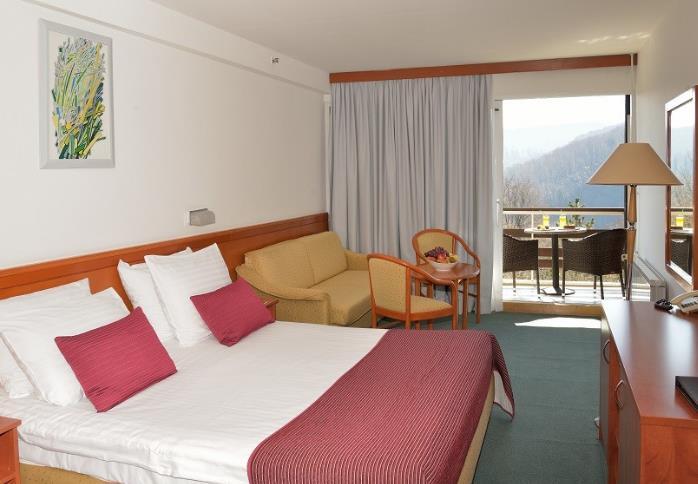 Hotel Jezero - 32