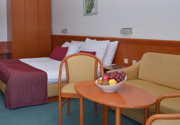 Hotel Jezero - 33
