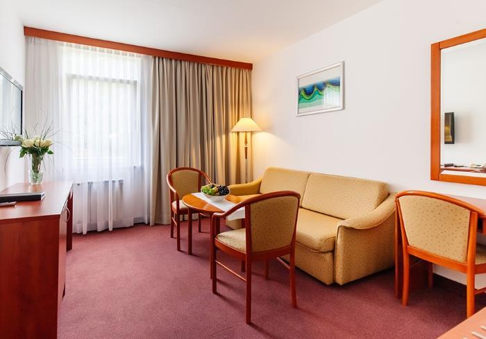 Hotel Jezero - 37