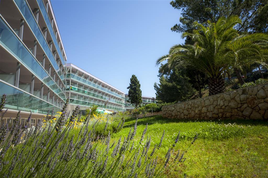Wellness hotel Aurora - 3