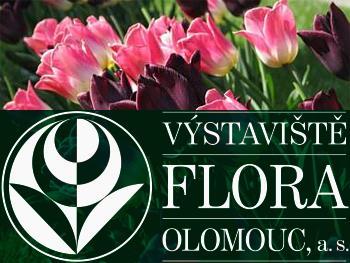 Flora Olomouc - leto 2020