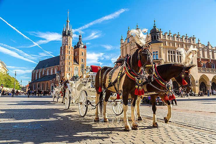 Kráľovský Krakow a Zoo